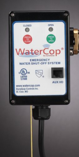 WaterCop Electric Actuator Motor, 115VAC, 1-1/4 In.