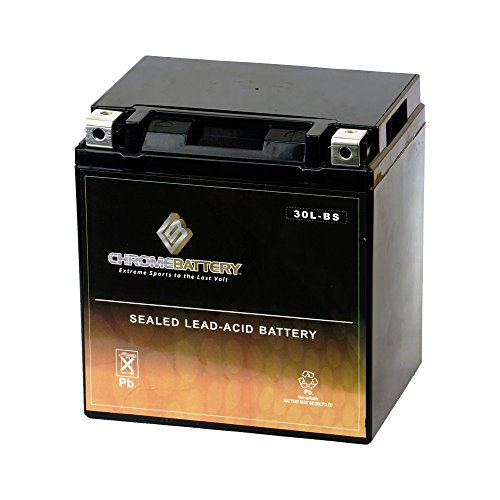 (Rechargeable YTX30L-BS Motorcycle Battery - Factory Sealed - Maintenance Free - High Performance - Chrome Battery)