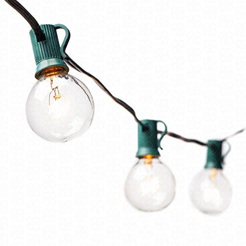 G40 Globe String Lights with 25 Clear Bulbs by Deneve - UL Listed Commercial Quality String Lights Perfect for Indoor  Outdoor Use - 3-YEAR 100% Satisfaction Guarantee on Light String (Green)