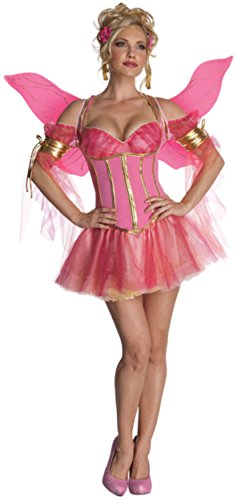 [Secret Wishes Enchanted Fairy Costume, Pink, Medium] (Sexy Fairy Halloween Costumes)