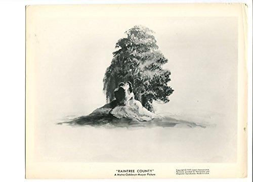 MOVIE PHOTO: RAINTREE COUNTY-1964-8 X 10-DRAMA-ELIZABETH TAYLOR VG