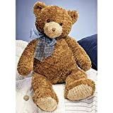 ": Gund Bear ""Dylan"" Large"