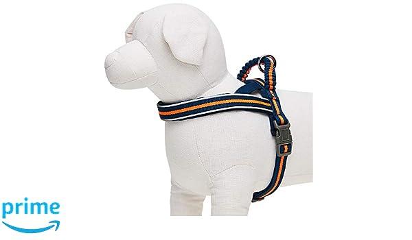 UMI. Essential - Arnés Ajustable para Perros con Acolchado de ...