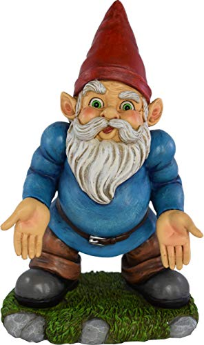 UpBlend Outdoors Garden Gnome - Norm The Lawn gnome has Some SERIOUS Questions - 9.75 inches Tall
