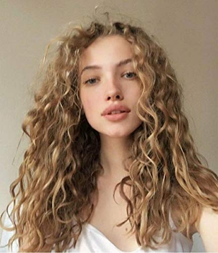 Vigour Fashion Women's Blonde Natural Looking Glueless Synthetic Hair Lace Front Wig Heat Friendly Side Parting Long Loose Wavy Replacement Hair Wigs 20inch