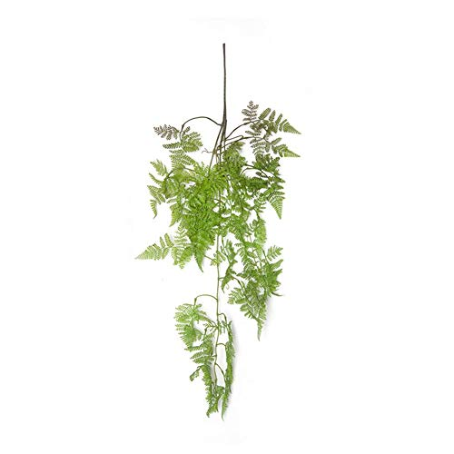 Per Simulated Fishtail Pine Fern Grass Industrial Style Window Decoration Fake Flower Wedding Plastic Artificial Plants Pine Fern Leaves Green Plants Simulation Rattan Persian Leaves Fern Leaf Pine