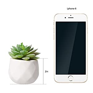 AmyHomie Artificial Plants Set of 4 Mini Fake Succulent Plants with Pots for Home Weeding Office Decoration 8