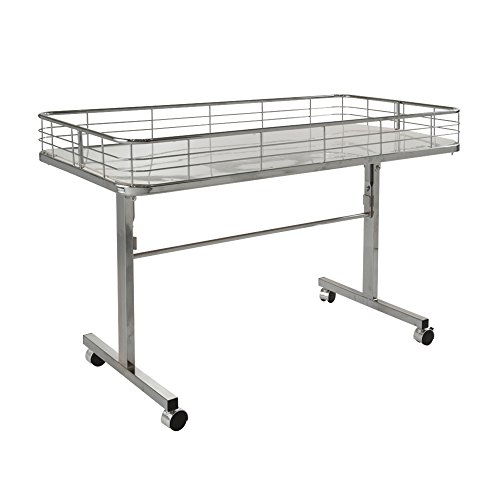 Econoco DT48/C Folding Dump - Dump Table