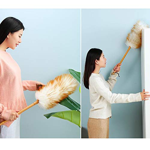 ZHANGY Ostrich Feather Makeup/Role Playing Accessories/Props Dust Scorpion Wooden Handle Cleaning The Donkey by ZHANGY (Image #5)
