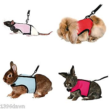 Trixie walk n vest harness for rats guinea pigs rabbits small trixie walk n vest harness for rats guinea pigs rabbits small animals publicscrutiny Image collections