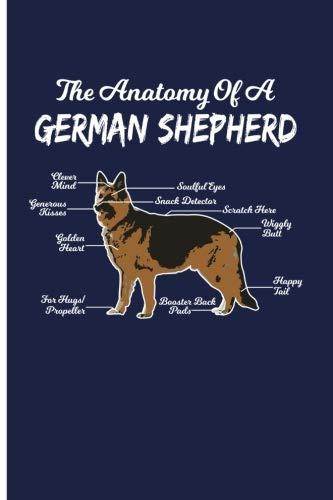 Dogs Eye Anatomy Photo Trend Ideas
