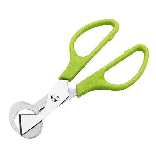 Hot Sale!UMFun Pigeon Quail Egg Scissors Cracker Opener Cigar Cutter Stainless Steel Tool 14x6cm (Green)
