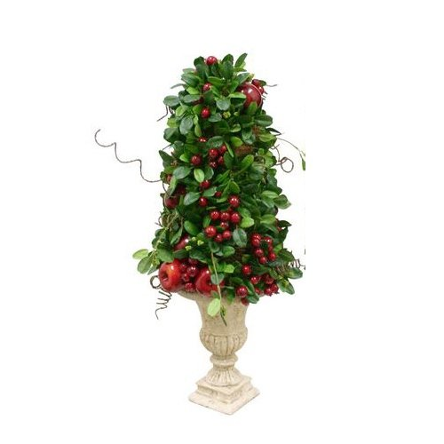 - Renaissance 2000 Shine Apple with Leaf Cone Topiary, 22