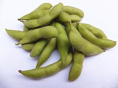 60 Edamame Soybean Pure Green Organic Edible Soy Bean Seeds ~Chris's garden