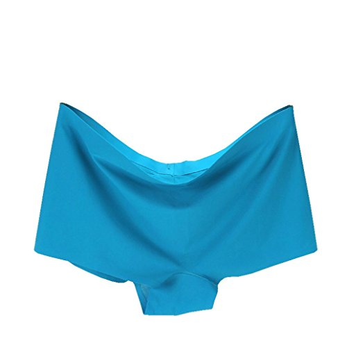 Clearance!Soft Panties,ZYooh Women Hipster Seamless Ice Silk Plus Size Underpants [Lightning Deals Panties] (Sky Blue, (Big Sky Carving)