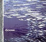 Fluxion: German Import by Ocean (2004-08-23)