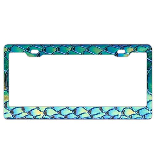 (Hopes's License Plate Frame for Women,Stainless Steel Metal License Plate Holder,Cute License Plate Frame - Holographic Snake Scale 2)