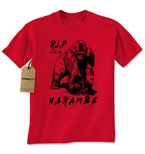 Expression Tees Harambe Cincinnati Gorilla product image