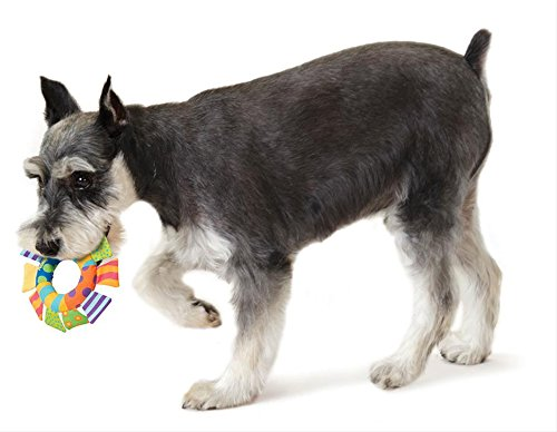 Petstages-141-Soft-Toss-Ring-Dog-Fetch-and-Play-Toy
