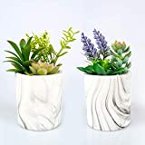 CADEAU Artificial Succulent Plants - Set of 2 Pots - 3 Colorful and Realistic Faux Succulents in Modern Marble Design Pot-Medium Size of Fake Decorative Large Plant Potted-Indoor Decor for Home Office