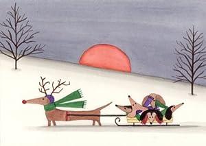 Amazon.com: 12 Christmas cards: Dachshund family sled ride ...