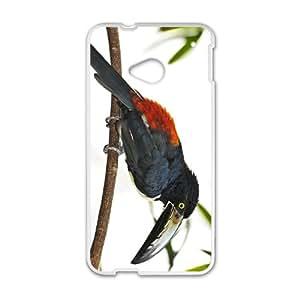 Toucan Parrot Hight Quality Plastic Case for HTC M7
