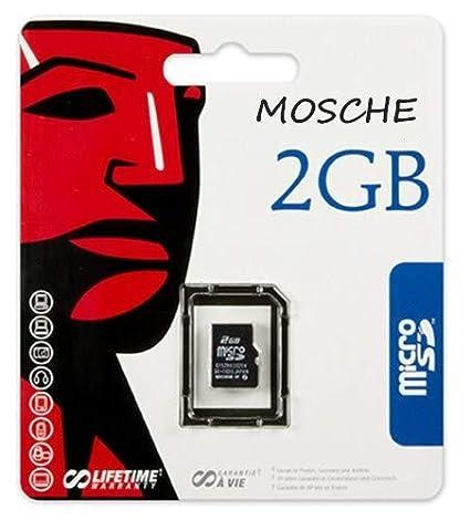 Kingston Technology 2GB microSD Card 2GB MicroSD Memoria ...