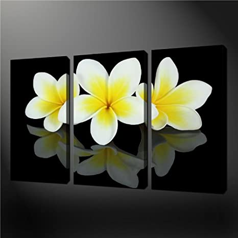 3 piece wall art painting pictures print on canvas black and white yellow frangipani flowers the picture for home modern decoration oil amazon co uk