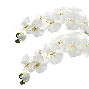 Meiliy 2pcs 11 Heads White Artificial Phalaenopsis Flower Real Touch Butterfly Orchid Flower Latex Orchids for Home Decoration Wedding Centerpieces Decorative Artificial Flowers (with no vase)