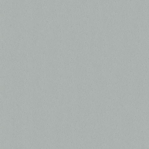 Weathered Smooth Cardstock, 12 x 12 Environment 80lb Cover, 25 (Environment 80 Lb Cover)