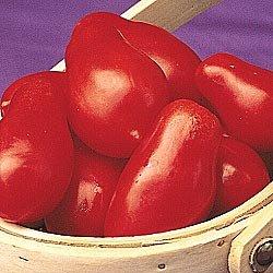 Roma Tomatoe Plant Seeds - 30 Fresh Seeds