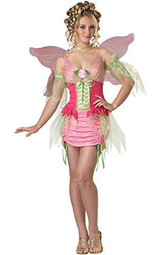 (Pixie Fairy Costume - Teen)