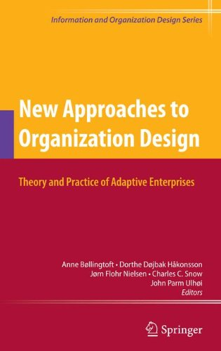 New Approaches to Organization Design: Theory and Practice of Adaptive Enterprises (Information and Organization Design Series)