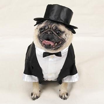 x large top dog tuxedo dog costume dog wedding suite