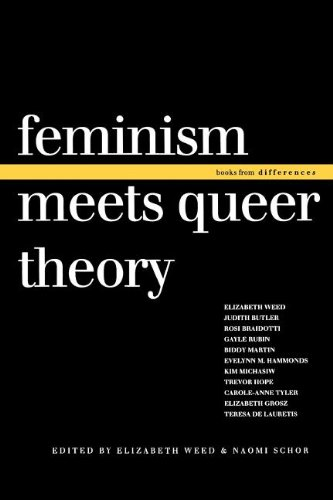 Feminism Meets Queer Theory (Books from differences)