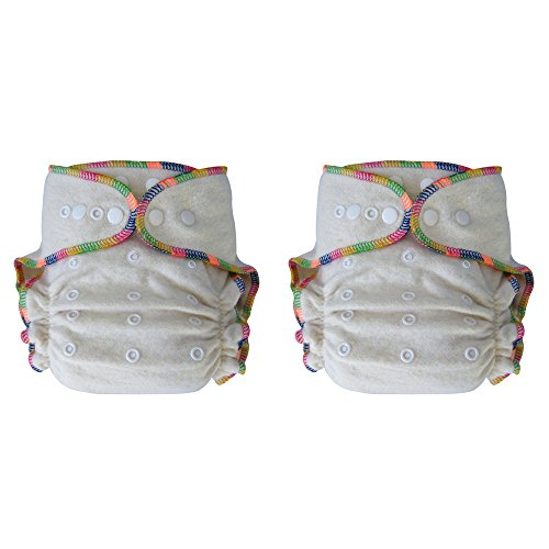 Heavy Wetter Baby Night Fitted Cloth Diaper with 2 Inserts, One Size 10-30 Lb, Hemp /Organic Cotton, 2-pack by Ecoable