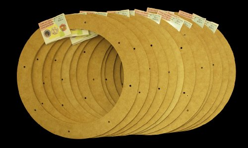 "12 Pack, 12"" Biodegradable Floral Craft Ring, Ez Glueable Wreath Form, for Photo Frame, Candle Ring, Etc"