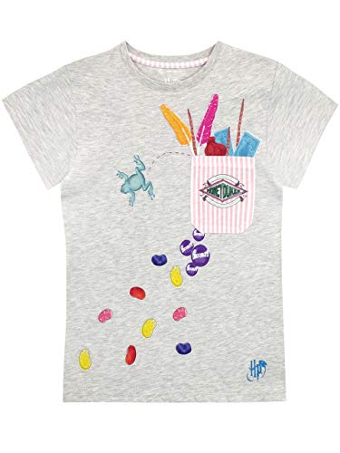 HARRY POTTER Girls' Honeydukes T-Shirt Grey Size 10