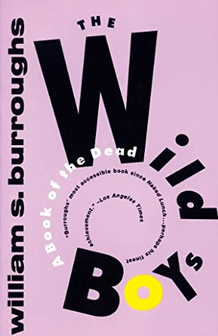 book cover of The Wild Boys