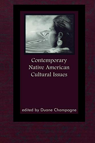 Contemporary Native American Cultural Issues (Contemporary Native American Communities)