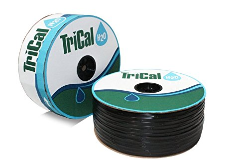 6 Mil Drip Tape Irrigation Gardening 12in. spacing12500ft5/8''0.2(GPH) by Trical