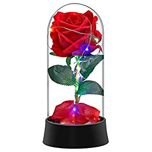 Lonzone Beauty and The Beast Flower, Enchanted Rose with Fallen Petals in Glass Dome on Plastic Base for Her - Party Wedding Anniversary (Colorful) 83