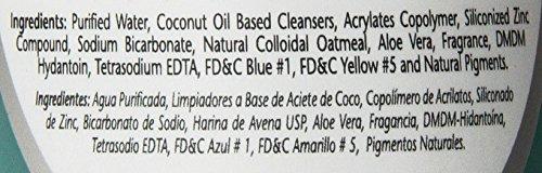 SynergyLabs-Veterinary-Formula-Soothing-and-Deodorizing-Oatmeal-Shampoo-with-Baking-Soda-Zinc-and-Aloe-Vera-17-fl-oz