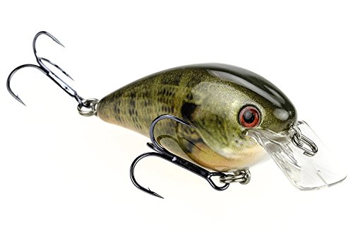 Strike King KVD 1.0 Square Bill Crankbait, Natural Bream