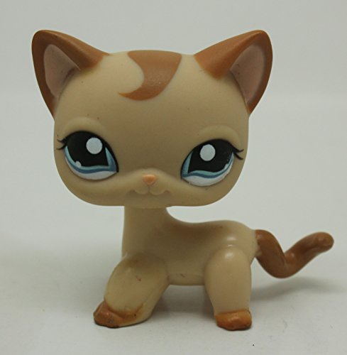 Littlest Pet Shop RARE Brown Short Hair Cat Kitty Blue Eyes LPS Toy #1024 (Littlest Pet Shop Brown Cat)