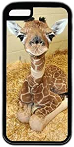 Baby Giraffe Theme Iphone 5c Case