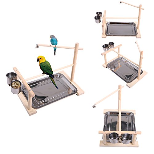 Medium Bird (QBLEEV Parrots Playstand Bird Cage Playground Wood Perches Gym Stand Exercise Playgym Toys (bird train stand(14.1