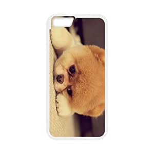 "IMISSU Pomeranian Phone Case For iPhone 6 Plus (5.5"")"