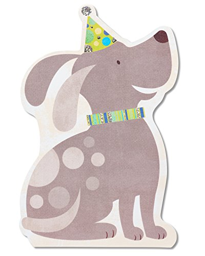American Greetings Birthday Puppy Birthday Card with Foil