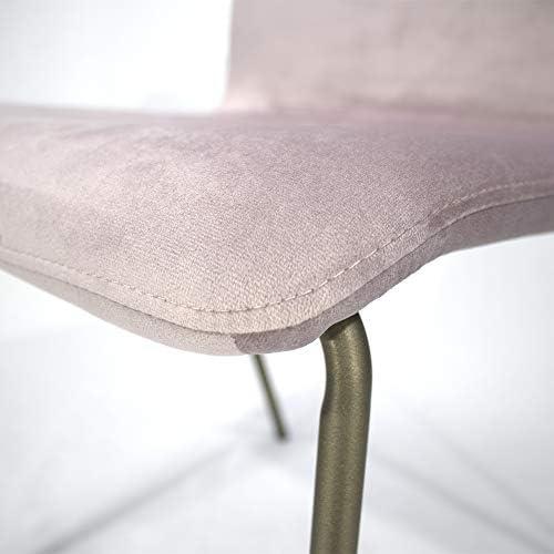 CADENTRO Lot de 4 chaises de Salle à Manger, Salon, chaises de Cuisine en Velours (Rose)